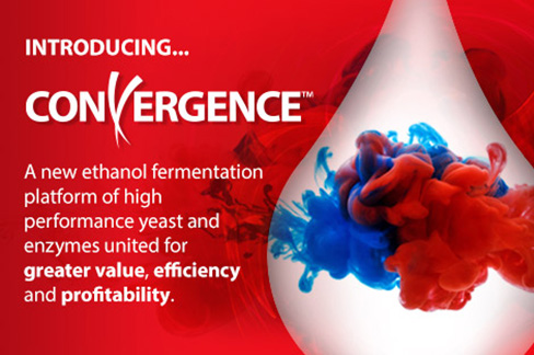 Introducing Convergence