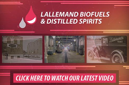 About Lallemand Biofuels & Distilled Spirits